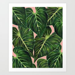 Tropical II Coral Art Print