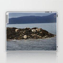 Seal Sisters Laptop & iPad Skin