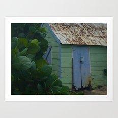 Caribbean Shed Art Print