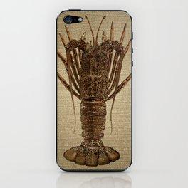 Antique Lobster Nautical Art iPhone Skin