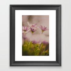 Hidden Beauty Framed Art Print