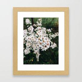 Kin Framed Art Print
