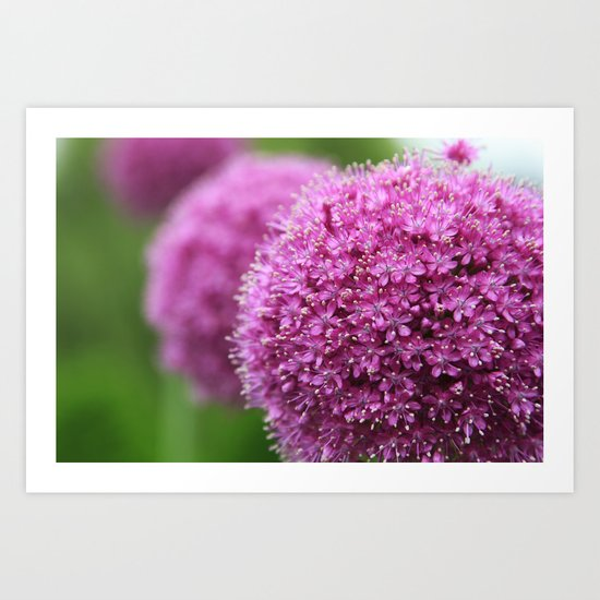 Simple(ly) Beautiful (Purple Plant Flower Leaf) Art Print