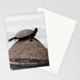 Baby Turtle on a Rock Stationery Cards