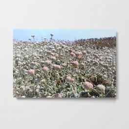 Coastal Blooms Metal Print
