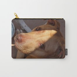 Shasta 2 Carry-All Pouch