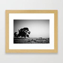 Field Of Empty Dreams Framed Art Print