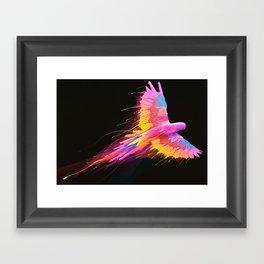 Flying Colors Framed Art Print