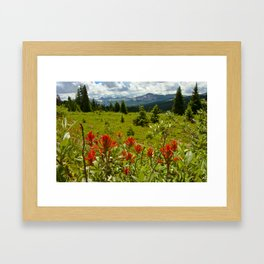Red paintbrush with mountain view Framed Art Print
