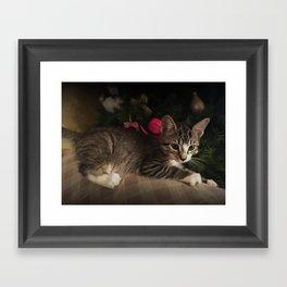 Molly in oils Framed Art Print