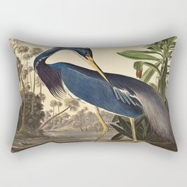 John James Audubon - Louisiana Heron Rectangular Pillow