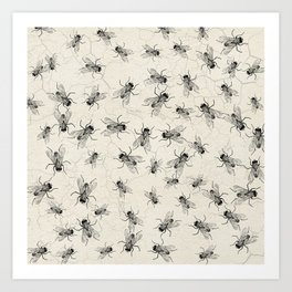 House Fly chaos Art Print