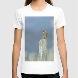 Passerotto-young sparrow T-shirt