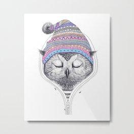 The Owl in a hood Metal Print