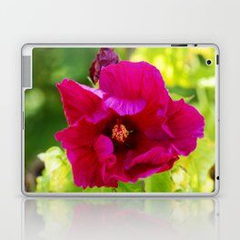 Jazzberry Jam Hibiscus Laptop & iPad Skin