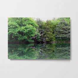 Nature's Mirror Metal Print