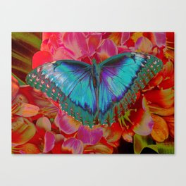Extreme Blue Morpho Butterfly Canvas Print