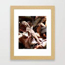 Forest Lizard Framed Art Print