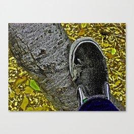 Holey Vans Canvas Print