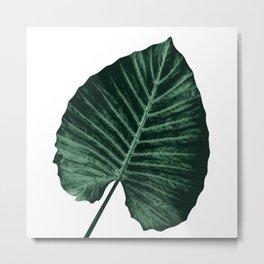 Love Leaves Evergreen - Him #3 #decor #art #society6 Metal Print