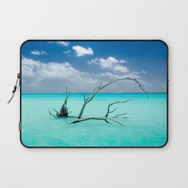 Driftwood in Lagoon Laptop Sleeve