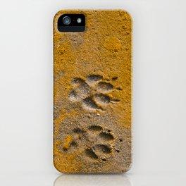 Paw Prints iPhone Case