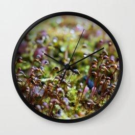 Wet Moss Wall Clock