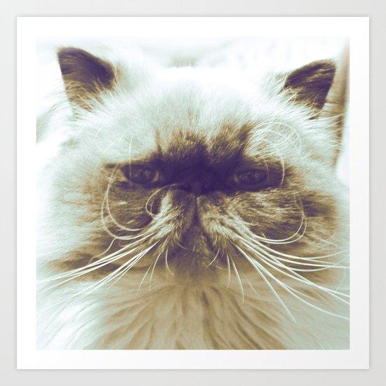 EXOTIC CAT Art Print