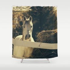 Autumn Mare Shower Curtain