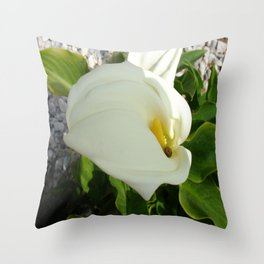A Large Single White Calla Lily Flower Throw Pillow