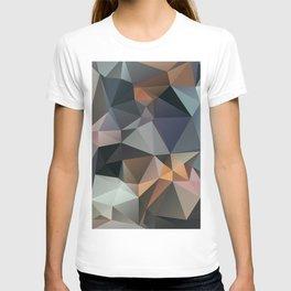 Assal T-shirt