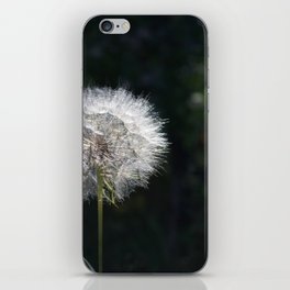 Dandylion iPhone Skin
