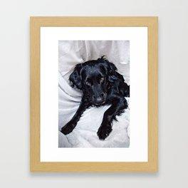GUAU Framed Art Print
