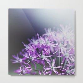 purple III Metal Print