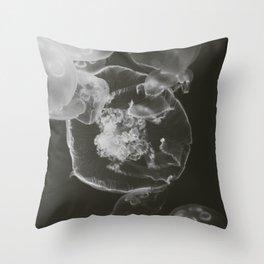 pb & j Throw Pillow