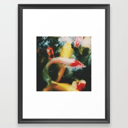 Nishikigoi Framed Art Print