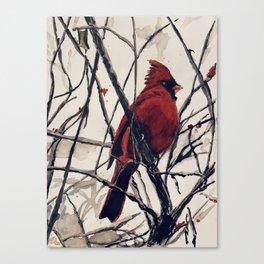 Mr. Cardinal Canvas Print