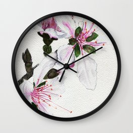 Delicate Pyrotechnics Wall Clock