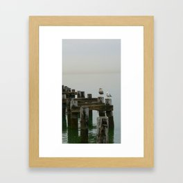 Seagulls on Long Island Sound Framed Art Print