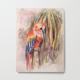 Macaw in Foliage Waterfall  Metal Print