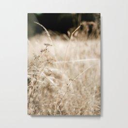 Grass Field Photography Metal Print