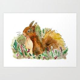 Squirrel in bush Art Print