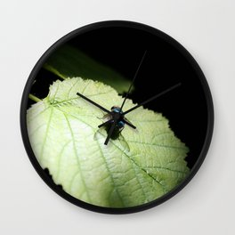 Flies can be pretty too Wall Clock