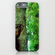 treehole2 iPhone 6 Slim Case