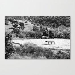 Horse Ranch Canvas Print