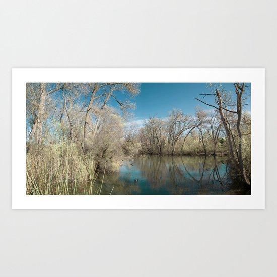 Pond Water Art Print