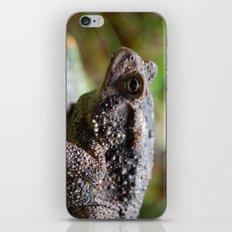 Living Stone iPhone & iPod Skin
