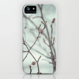 Wintermint. iPhone Case