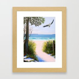 Sea eagle at Jervis Bay Framed Art Print