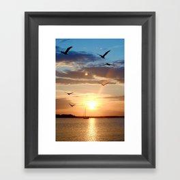 birds over the horizon Framed Art Print